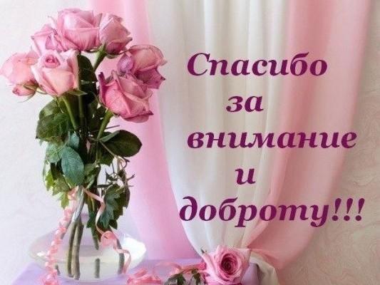 129393126_spasibo_za_vnimanie_i_dobrotu